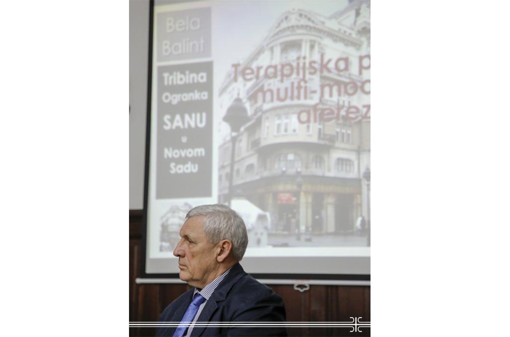 BBalint predavanje SANU.jpg
