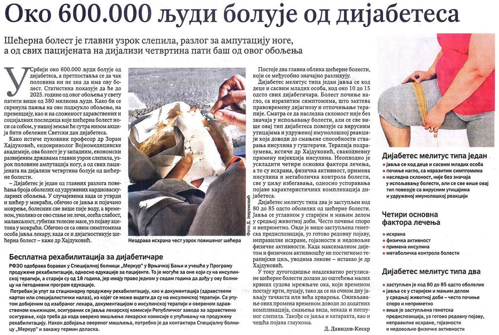 hajdukovic_politika.JPG
