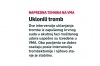 Srpski telegrad 11112017.jpg
